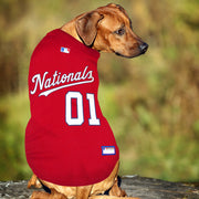 Washington Nationals Dog Jersey