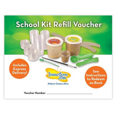Green and white voucher for 33 caterpillars, brown food, 33 individual vials, measuring spoon and knife.