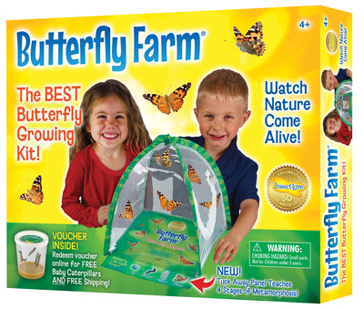 Green, tent-shaped butterfly habitat, orange and black butterflies, on yellow and green Insect Lore box.