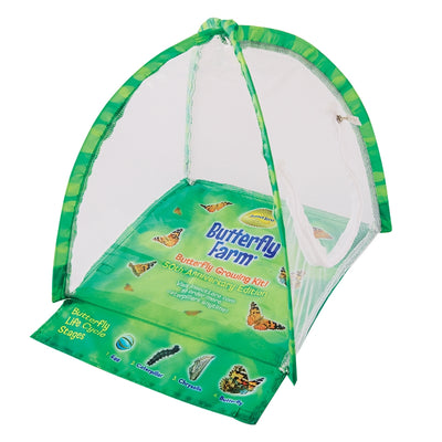 Green tent-shaped butterfly farm with clear viewing panel and fold-out life cycle learning tool.