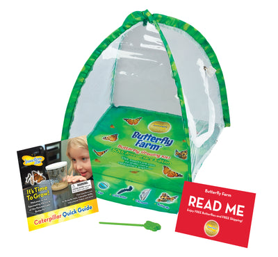 Green, tent-shaped butterfly habitat with clear viewing panel, feeding pipette, red voucher and caterpillar instructions.