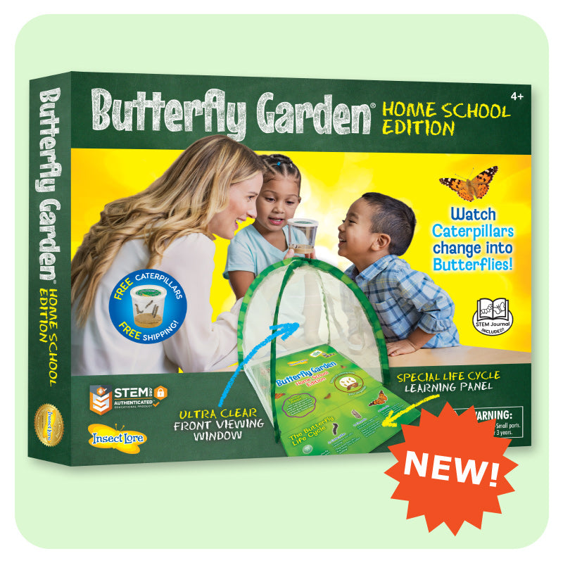 Home school edition box with image of two children and their teacher observing the cup of caterpillars. Domed habitat with educational panel takes up the foreground.