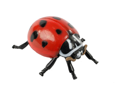 Realistic plastic red and black adult stage of the ladybug life cycle figurines set.