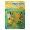 4 praying mantis life cycle figurines, soft egg, hardened egg, nymphs, praying mantis in Insect Lore packaging.
