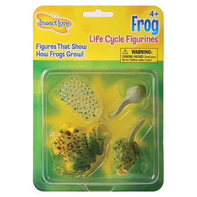 Insect Lore packaging of four frog life cycle stages figurines, featuring spawn, tadpole, frog with tail, and adult frog