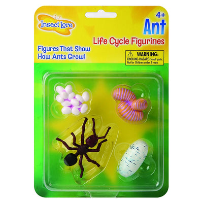 4 life cycle figurines of white eggs, pink larva, white pupa, and brown ant, encased inside green and yellow Insect Lore packaging.
