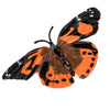 Realistic, plastic, orange and black butterfly of the butterfly life cycle figurines set.