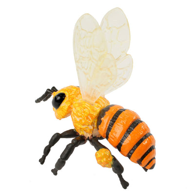 Realistic plastic black-and-yellow honey bee stage of the bee life cycle figurines set.