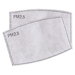 PM2.5 Filters