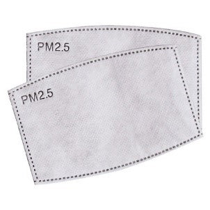 10 - 2 pack- PM2.5 Filters