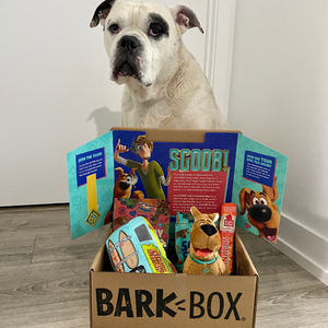 BarkBox is back in Canada!