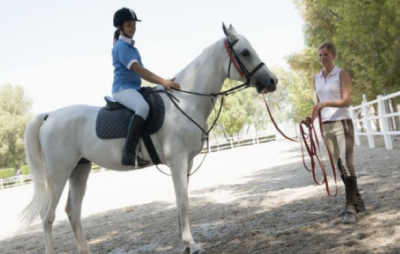 Buying a horse with horse tack co.