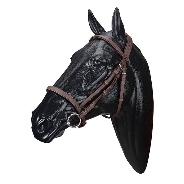 Wintec English Bridles Brown