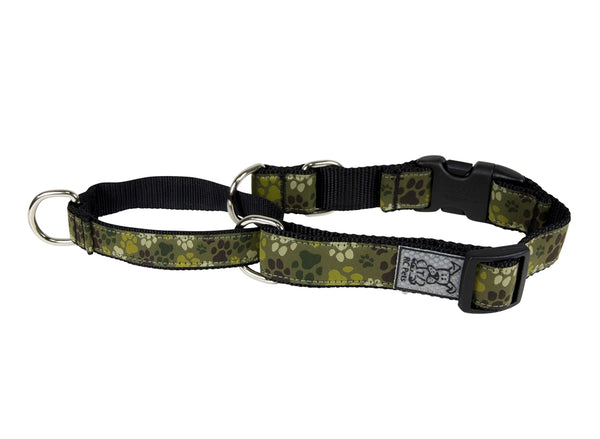RC Web Training Collar