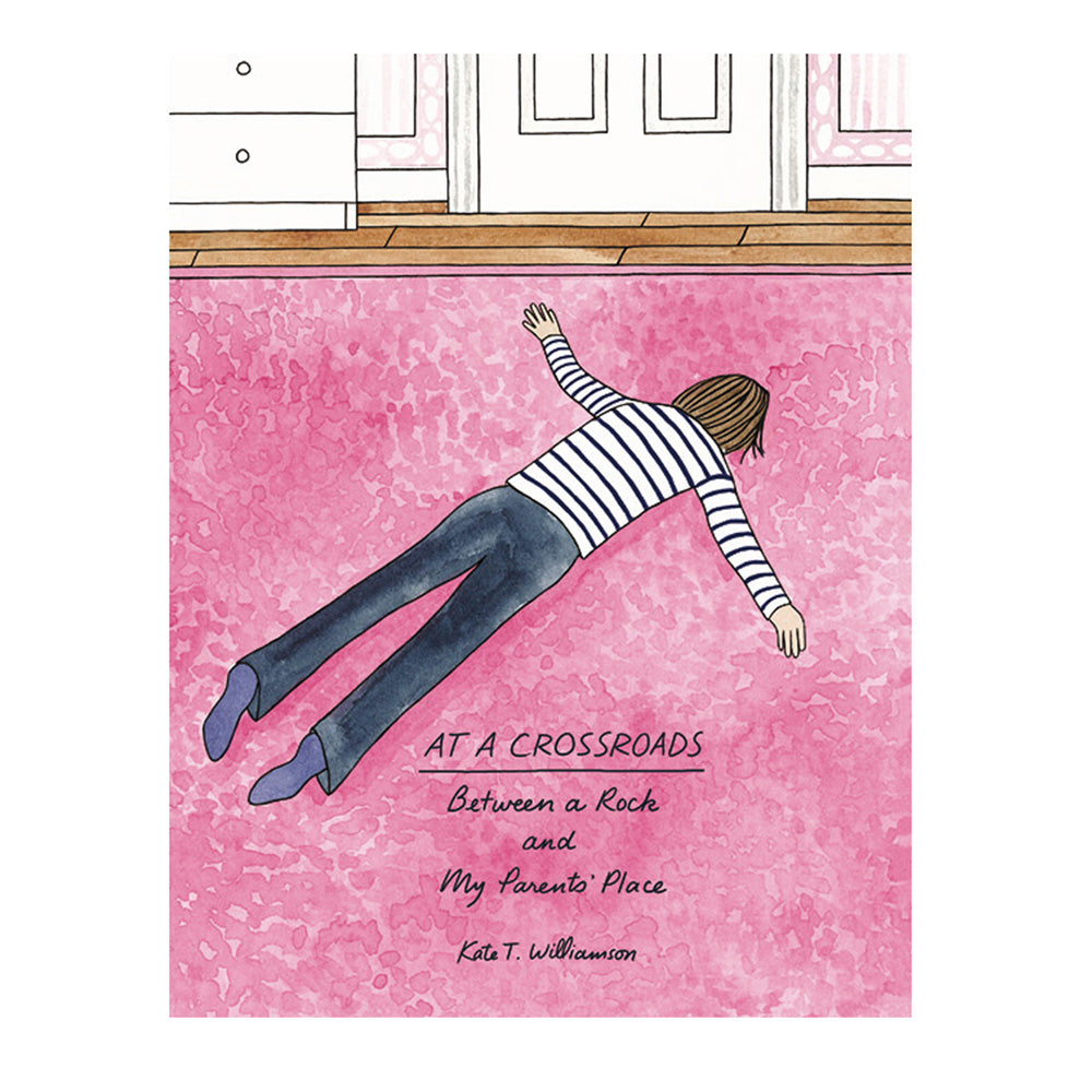 AT A CROSSROADS, a book written and illustrated by Kate T. Williamson