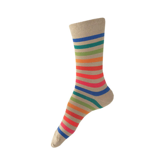 MADE IN USA women's tan/beige cotton socks with rainbow stripe by THIS NIGHT