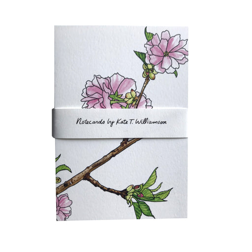 MADE IN USA Cherry Blossom (Sakura) Note Cards by Kate T. Williamson