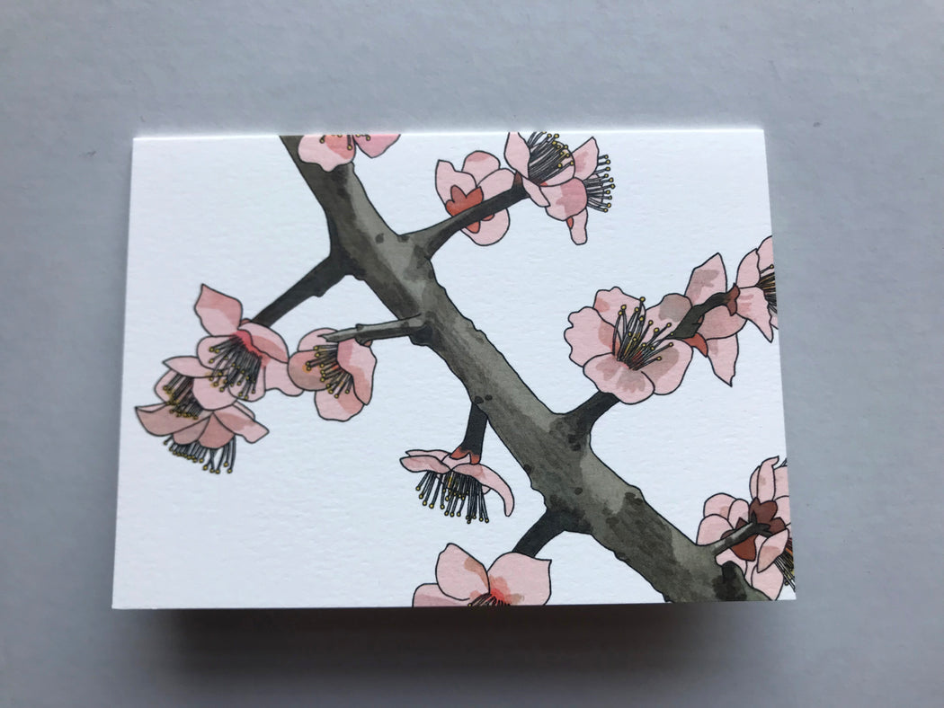 MADE IN USA Flowering Branch Botanical Note Cards by Kate T. Williamson with plum blossoms (ume))