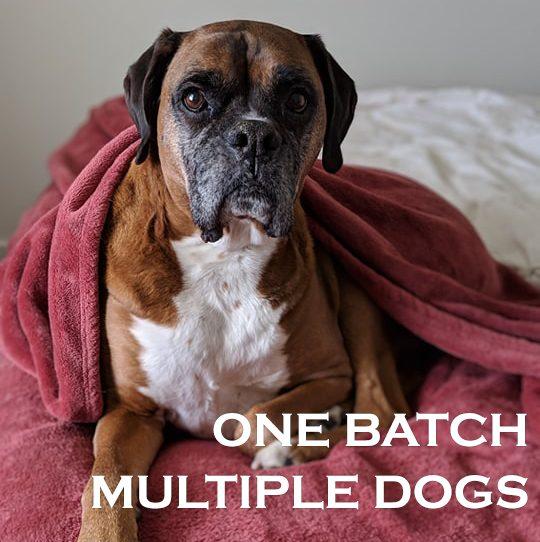 Making Batch Recipes for Multidog Households