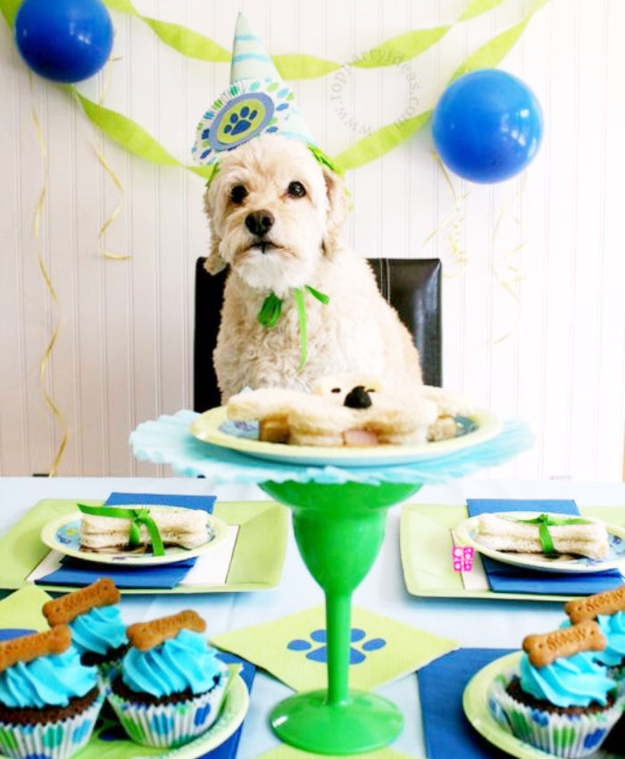pet party dog hat cake decorations