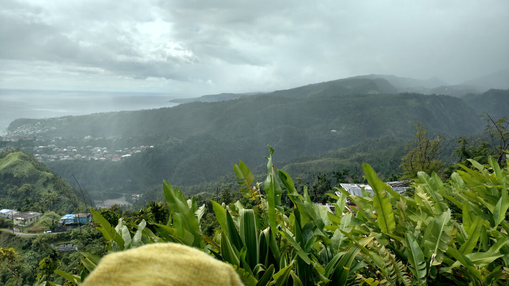 View from Eggleston, Dominica