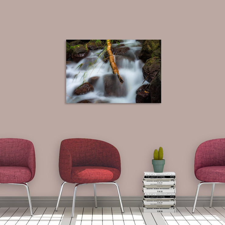 Canvas print of Sticking Out by Yuri A Jones