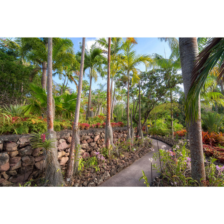 Nevis Botanical Gardens I by Yuri A Jones
