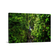 Canvas print of Hidden at Jacko Falls by Yuri A Jones