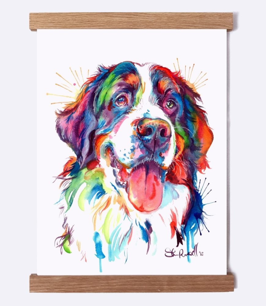 Bernese Mountain Dog - Watercolor Print - Shaunna Russell