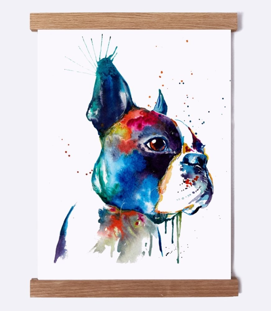 Boston Terrier - Watercolor Print - Shaunna Russell