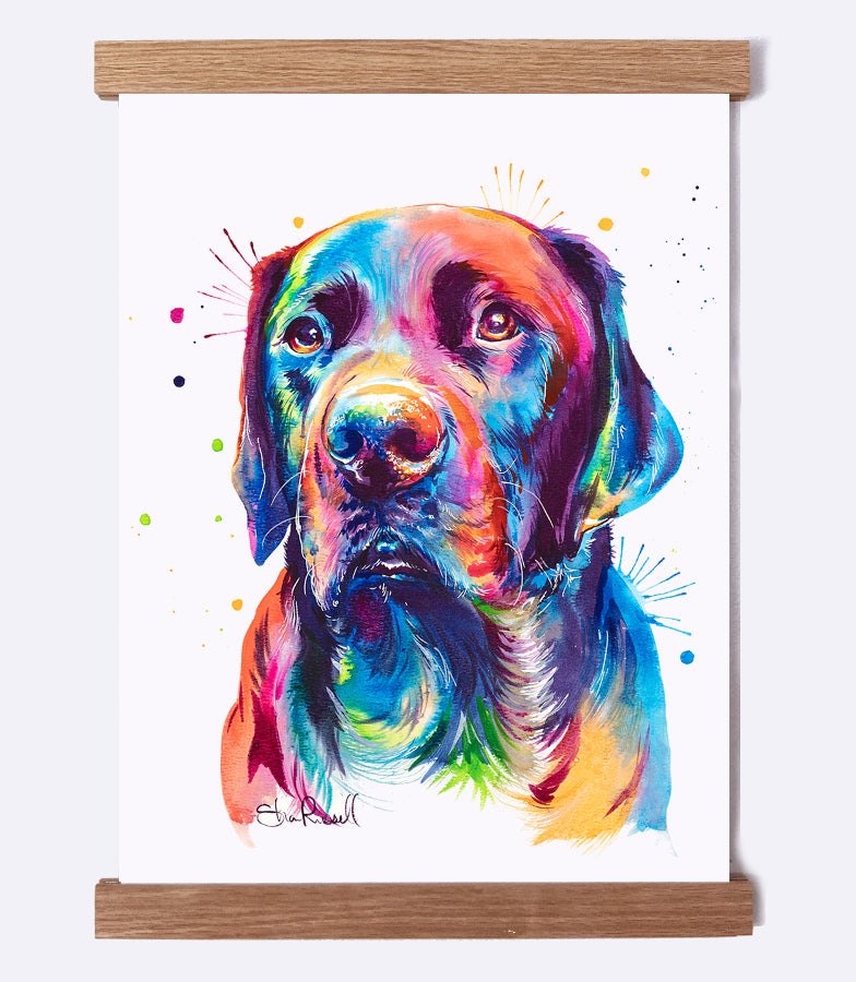 colorful black lab or chocolate lab watercolor print