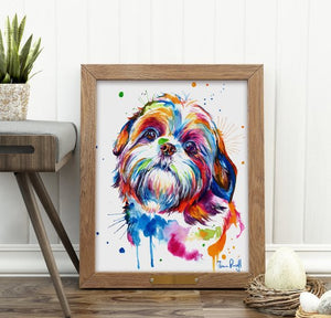 Shih Tzu - Watercolor Print