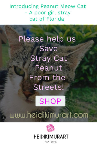 Introducing Peanut Meow Cat - A poor girl stray cat from the streets of Florida now saved  Please help us save Peanut from the streets!
