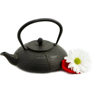 The Playful Dragonfly Cast Iron Teapot