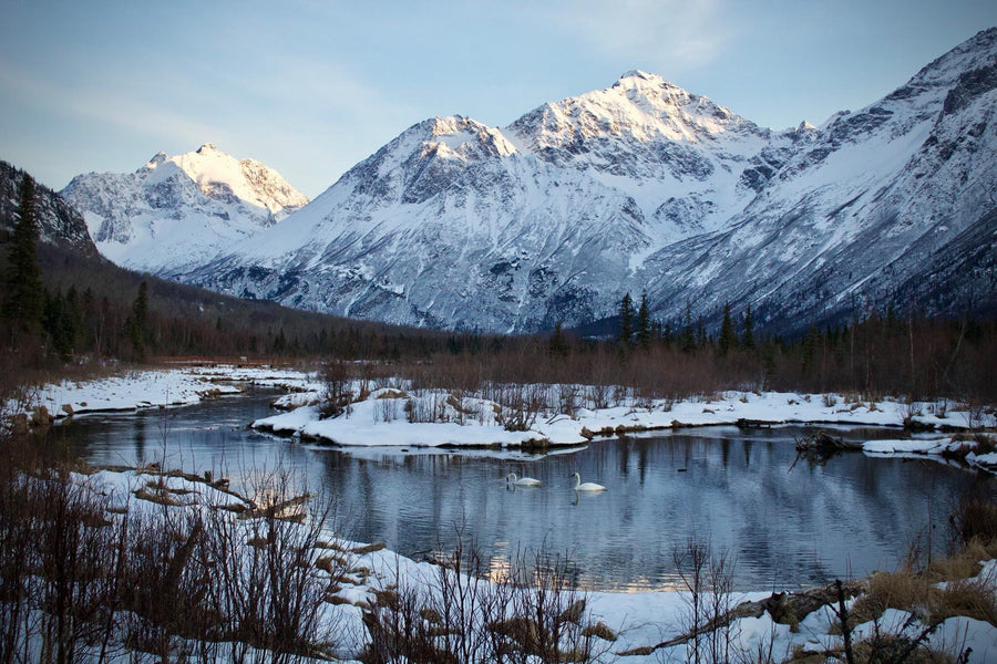 7 Reasons to Put Alaska on Your Travel Bucket List
