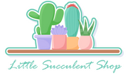 Little Succulent Shop