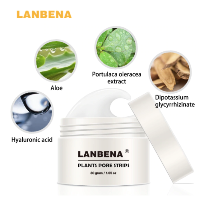 Gadgets d'Eve Masque Anti Points Noirs LANBENA