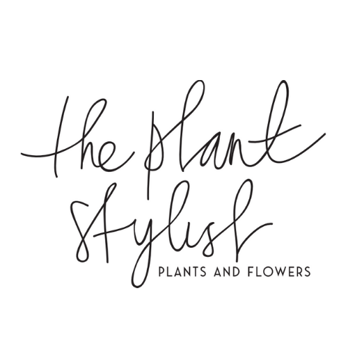 The Plant Stylist