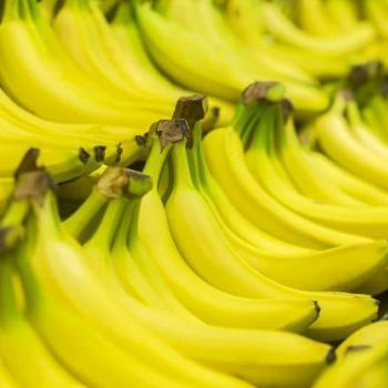 Bananas Medium Semi Colour (Kg)