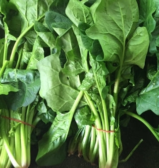 Spinach English (Bunch)