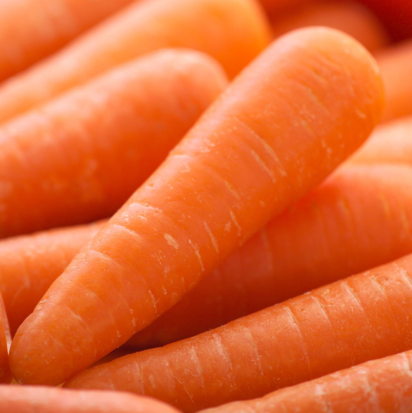Carrots Medium (Kg)