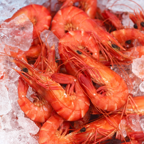 Fresh Australian Tiger Prawns (Large) - 500g