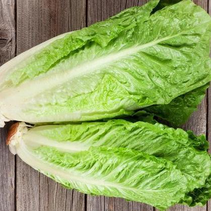 Lettuce Cos (Each)