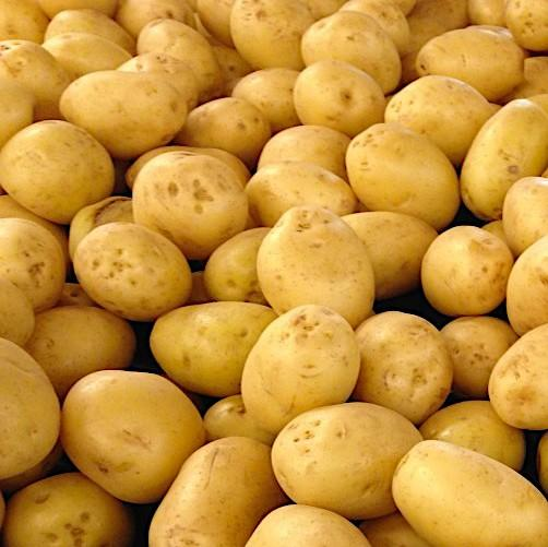 Potatoes Washed (Kg)