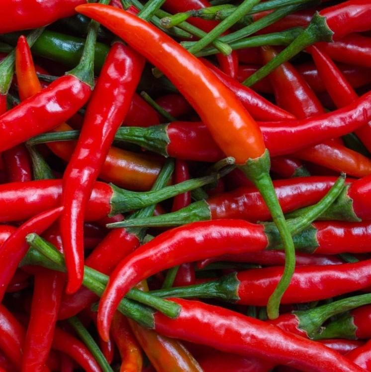 Chilli Red Small (Pack)