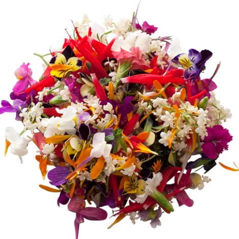 Seasonal Edible Flowers Mix