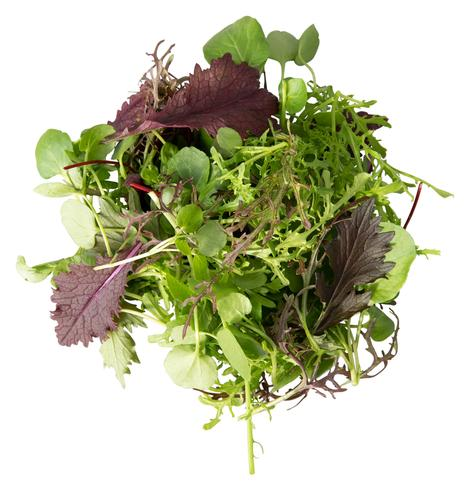 Forage Salad Leaves Mix 500 grams