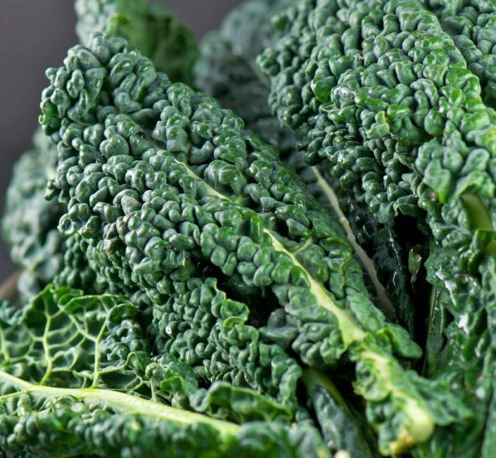 Kale (Bunch)