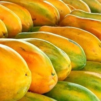Papaya (Each)