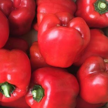 Capsicum Red Large (Each)